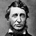 Henry David Thoreau (American Philosopher)