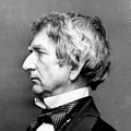 Inspirational Quotations by William H. Seward (American Elected Representative)